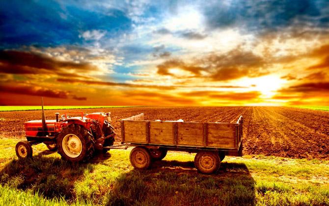 Земли сельхоз назначения для садоводства